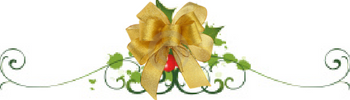 holly-gold-bow